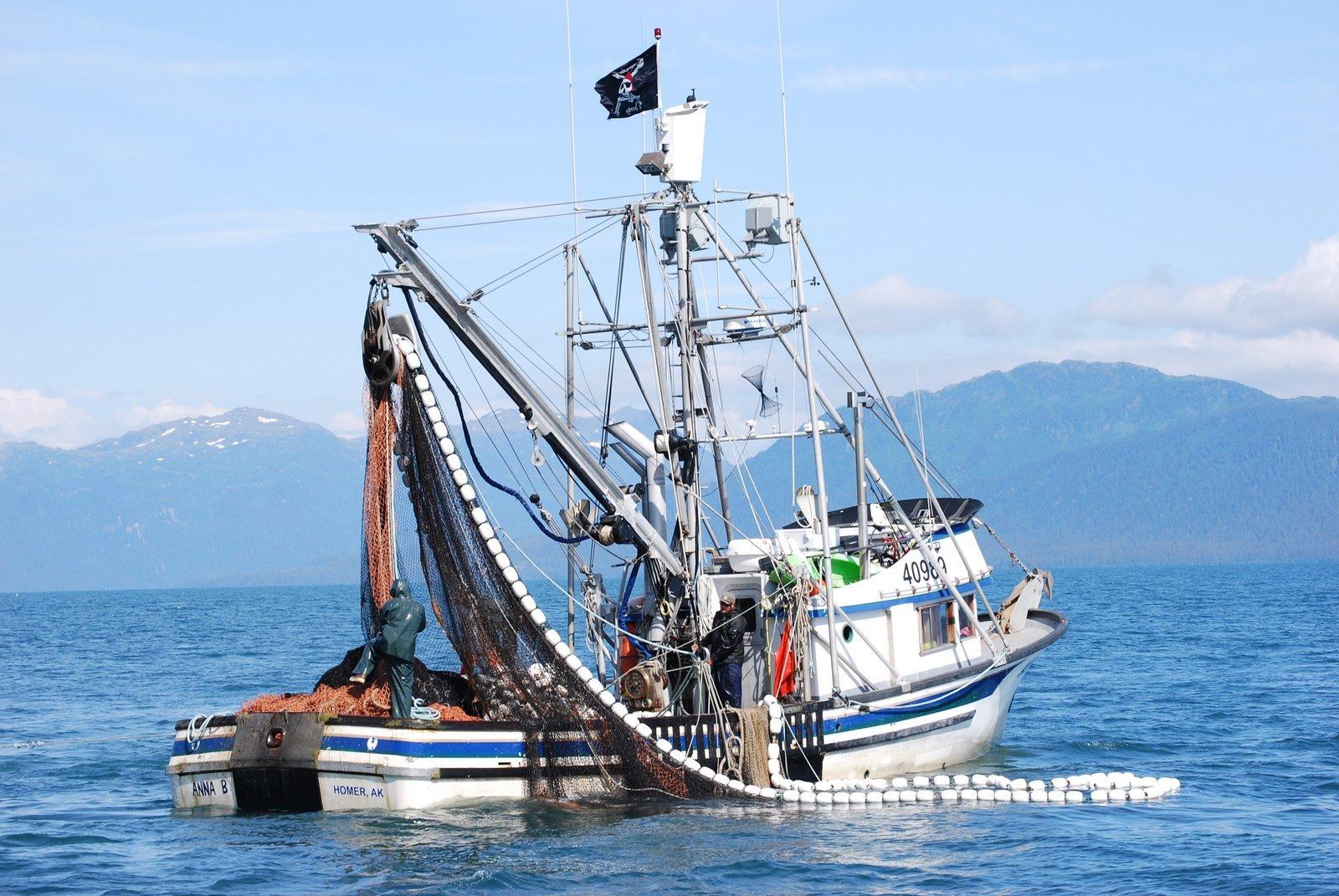 Industria pesquera y congelacion rapida