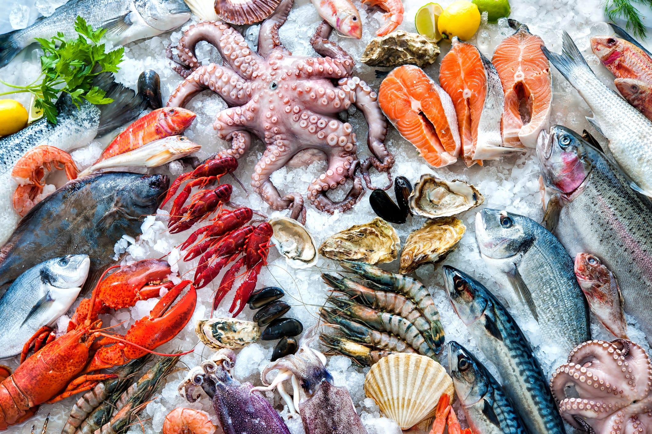 sistemas de refrigeracion para la industria de la pesca